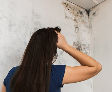 What About Black Mold